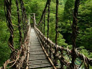 四国の秘境のかずら橋_portal.nifty.com