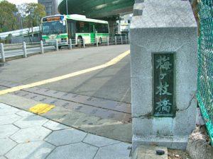 kita-ku.jugem.jp (2)