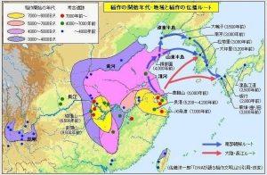 本格的水田稲作文化_www.geocities.jp